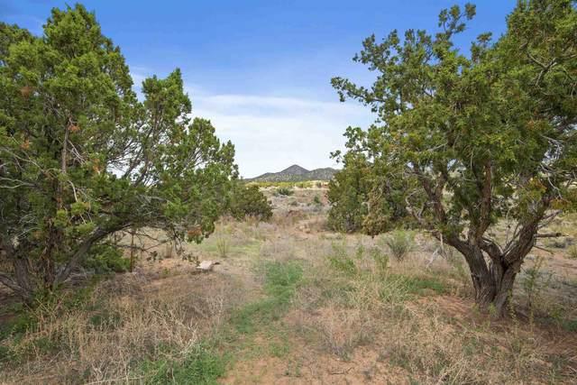 22 Verano Loop, Santa Fe, NM 87508 (MLS #202001963) :: The Desmond Hamilton Group