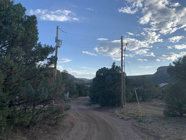 TBA Oak Brush Ln, Los Ojos, NM 87551 (MLS #202001968) :: Berkshire Hathaway HomeServices Santa Fe Real Estate