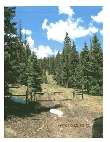 0 Us Forest Road 87-F (Off Hwy 17), Chama, NM 87520 (MLS #202001982) :: The Desmond Hamilton Group