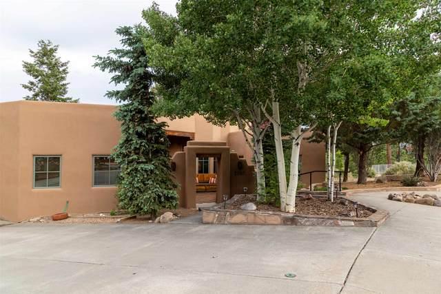 2020 Torreon, Los Alamos, NM 87544 (MLS #202001983) :: The Desmond Hamilton Group