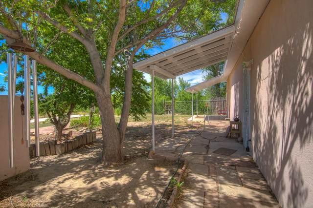 335 County Road 84, Santa Fe, NM 87506 (MLS #202002011) :: The Desmond Hamilton Group