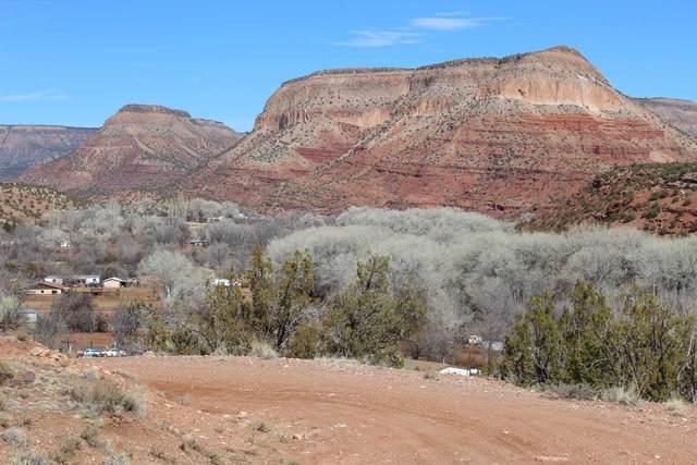 1 Highway 485, Jemez Pueblo, NM 87024 (MLS #202002032) :: Summit Group Real Estate Professionals