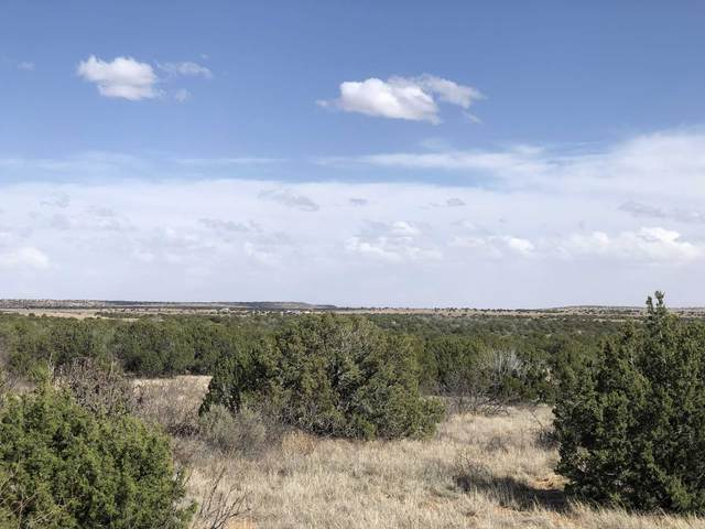 1300 Blue Hole Road, Santa Rosa, NM 88435 (MLS #202002048) :: Summit Group Real Estate Professionals