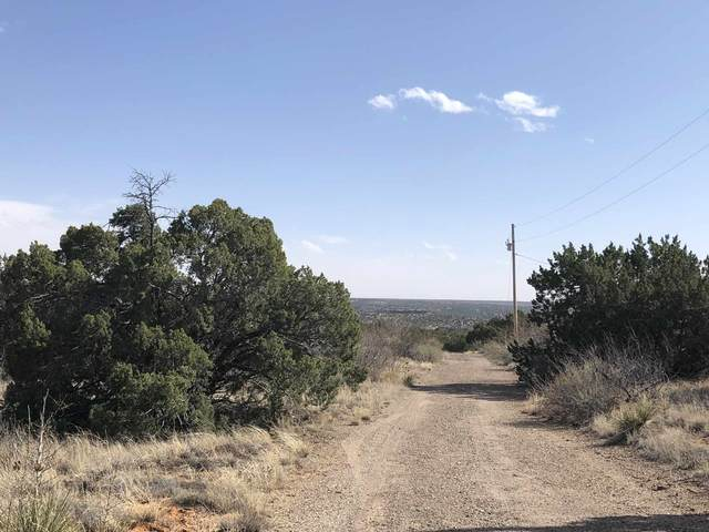 1250 Blue Hole Road, Santa Rosa, NM 88435 (MLS #202002049) :: Summit Group Real Estate Professionals