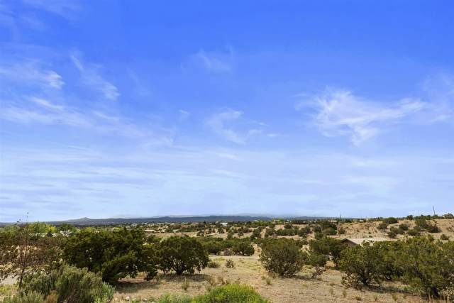 28 Vereda Serena, Santa Fe, NM 87508 (MLS #202002059) :: The Desmond Hamilton Group