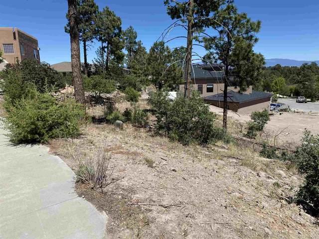 1620 Sonrisa, Los Alamos, NM 87544 (MLS #202002111) :: The Desmond Hamilton Group