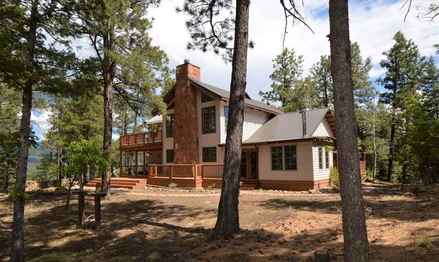 46 Skyline Trail, Rociada, NM 87742 (MLS #202002142) :: The Very Best of Santa Fe