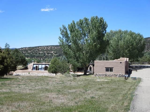 64C Hondo Seco Road, Taos, NM 87571 (MLS #202002163) :: The Desmond Hamilton Group
