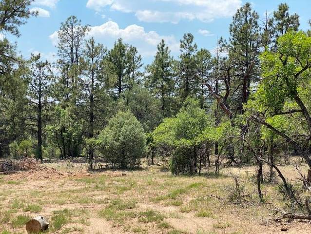 TBD Lot 14-A Laguna Vista S/D, Rutheron, NM 87551 (MLS #202002164) :: Berkshire Hathaway HomeServices Santa Fe Real Estate