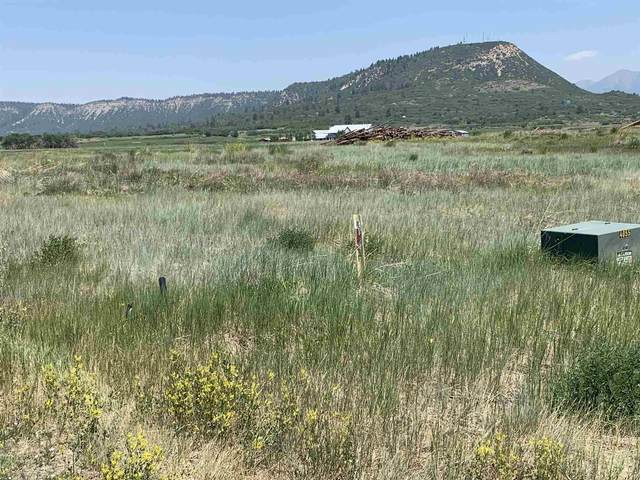 TBD Lot 1 Rio Chamita Trail-Dos Rios, Chama, NM 87520 (MLS #202002198) :: Berkshire Hathaway HomeServices Santa Fe Real Estate