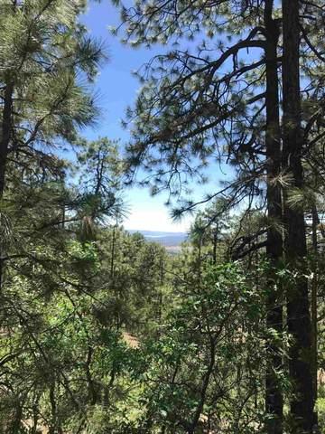 7 59 Ponderosa, Chama, NM 87520 (MLS #202002223) :: Berkshire Hathaway HomeServices Santa Fe Real Estate