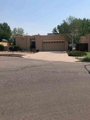 117 Calle Don Jose, Santa Fe, NM 87501 (MLS #202002228) :: The Desmond Hamilton Group