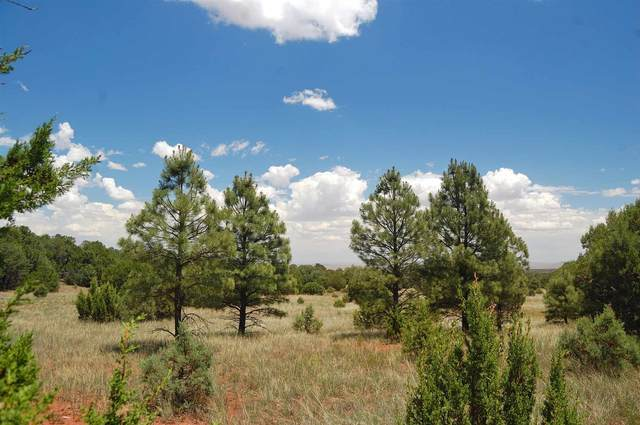 235 Red Canyon Rd, Tajique, NM 87016 (MLS #202002238) :: The Desmond Hamilton Group