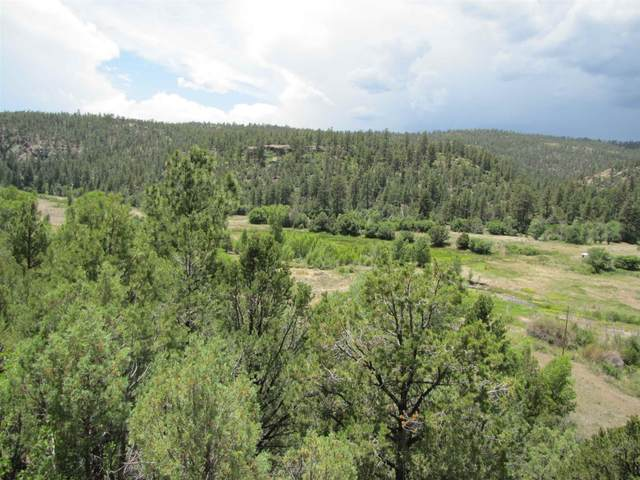 3 Lots Nm 519 Las Tables, Vallecitos, NM 87581 (MLS #202002266) :: Berkshire Hathaway HomeServices Santa Fe Real Estate