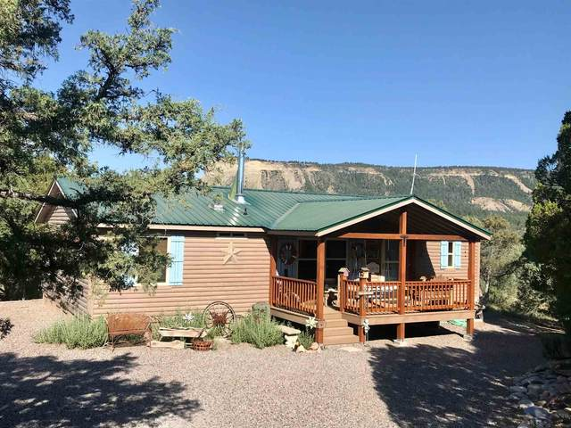 808 County Road 322, Rutheron, NM 87551 (MLS #202002285) :: Berkshire Hathaway HomeServices Santa Fe Real Estate