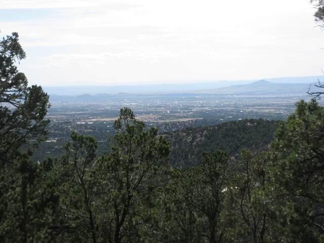 11 Mountain Top Road, Santa Fe, NM 87505 (MLS #202002344) :: The Desmond Hamilton Group