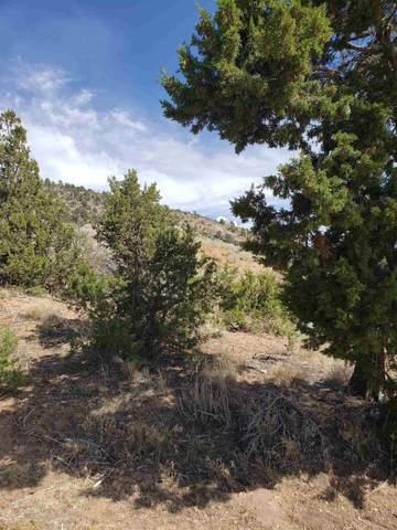 38 Stacy, Santa Fe, NM 87505 (MLS #202002367) :: The Very Best of Santa Fe