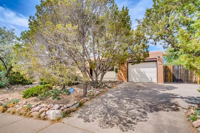 617 Calle De Valdez, Santa Fe, NM 87505 (MLS #202002400) :: The Desmond Hamilton Group