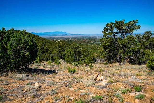 111 Double Arrow Road South, Santa Fe, NM 87505 (MLS #202002401) :: The Desmond Hamilton Group