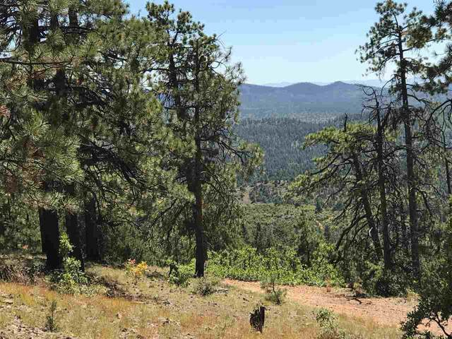 0 Unit 7, Tract 58, Ponderosa, Chama, NM 87520 (MLS #202002420) :: Berkshire Hathaway HomeServices Santa Fe Real Estate