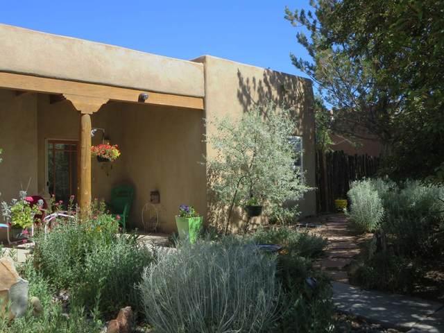 314 South Trapper Road, Taos, NM 87571 (MLS #202002431) :: The Desmond Hamilton Group