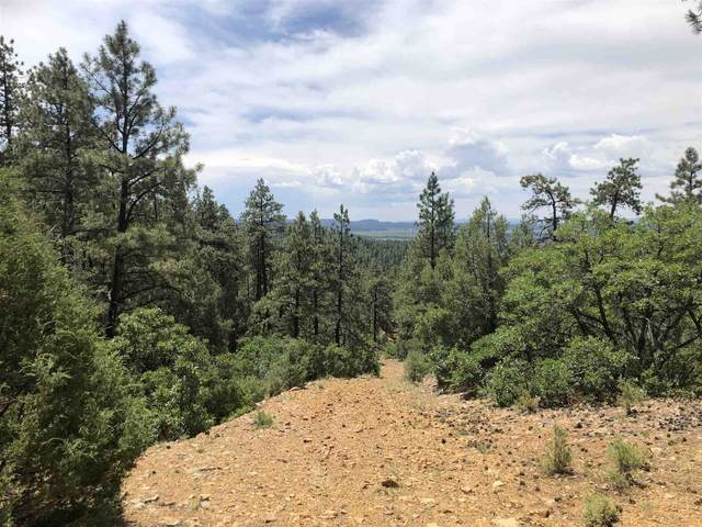 TBD Deer Run Road, Chama, NM 87520 (MLS #202002439) :: Berkshire Hathaway HomeServices Santa Fe Real Estate