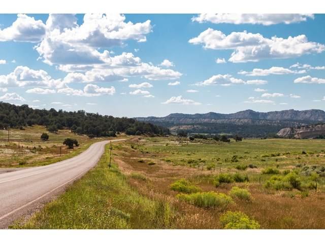 1866 Nm-96, Gallina, NM 87017 (MLS #202002440) :: Berkshire Hathaway HomeServices Santa Fe Real Estate