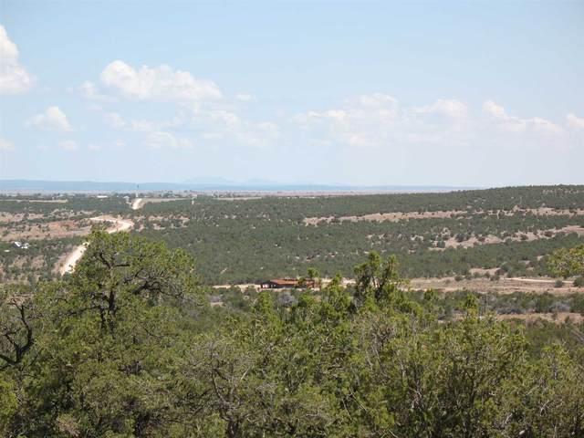1580 Deer Canyon Trail, Mountainair, NM 87036 (MLS #202002462) :: The Desmond Hamilton Group