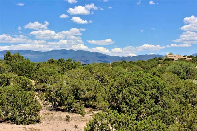 21 Blazing Star Circle, Santa Fe, NM 87506 (MLS #202002463) :: The Desmond Hamilton Group