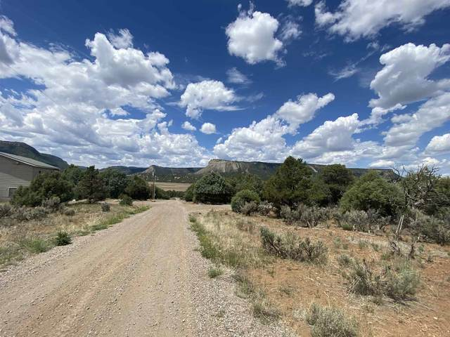 Pinon Ridge Lot 21, Chama, NM 87520 (MLS #202002467) :: Summit Group Real Estate Professionals