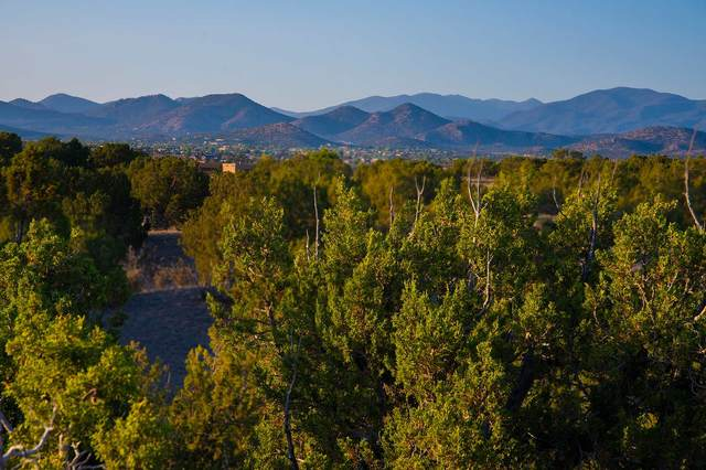 30 Silver Saddle, Santa Fe, NM 87508 (MLS #202002489) :: The Desmond Hamilton Group