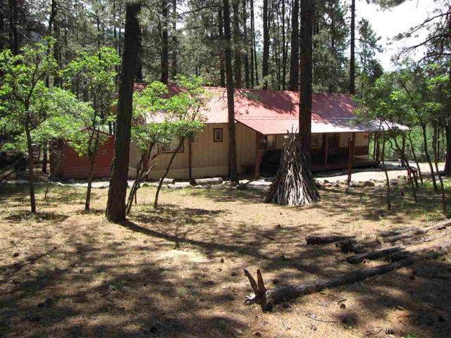 18 Rainbow Lane, Chama, NM 87520 (MLS #202002496) :: The Desmond Hamilton Group