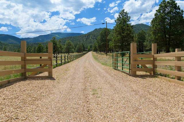 --- State Hwy 434, Guadalupita, NM 87722 (MLS #202002501) :: The Very Best of Santa Fe