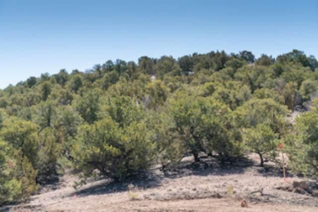 802 Calle Correos, Santa Fe, NM 87501 (MLS #202002531) :: The Very Best of Santa Fe