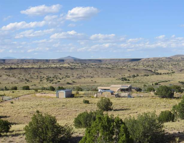 100 Vista Galisteo, Cerrillos, NM 87010 (MLS #202002565) :: The Desmond Hamilton Group