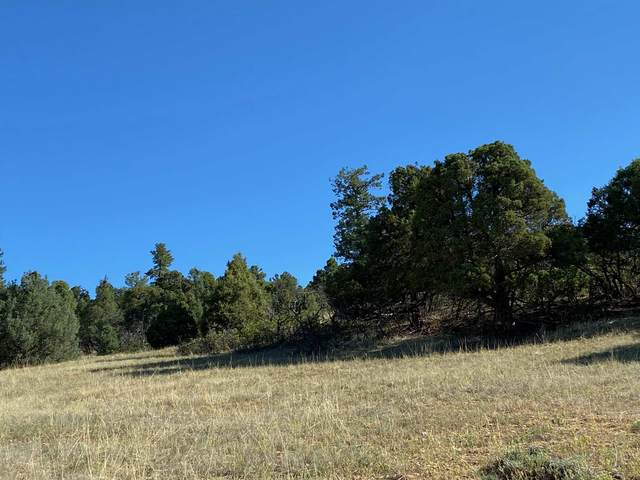 0 Unit 6, Tract 30, Ponderosa, Chama, NM 87520 (MLS #202002570) :: The Very Best of Santa Fe