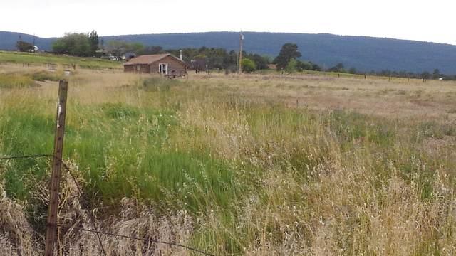 County Rd 426 W Mesa De Poleo, Mesa Poleo, NM 87012 (MLS #202002592) :: The Very Best of Santa Fe