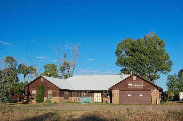 2523 Danielle Dr., Chama, NM 87520 (MLS #202002597) :: The Very Best of Santa Fe
