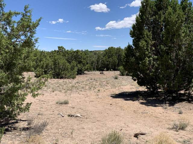 68 Sloman Lane, Santa Fe, NM 87507 (MLS #202002601) :: The Very Best of Santa Fe