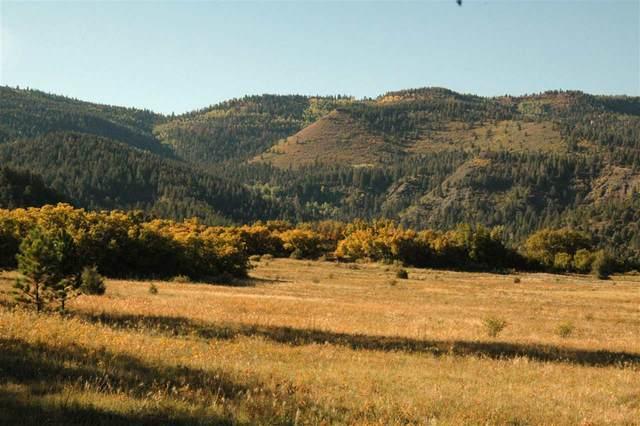 163 Acres Los Alamitos Rd, Chacon, NM 87713 (MLS #202002604) :: The Very Best of Santa Fe