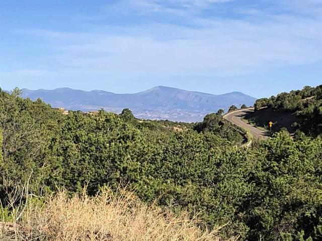 291 Nm 592, Santa Fe, NM 87506 (MLS #202002642) :: Summit Group Real Estate Professionals