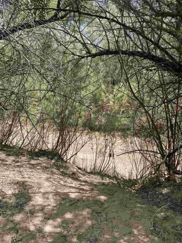 Lot 5D River Rd., Ojo Caliente, NM 87549 (MLS #202002659) :: Summit Group Real Estate Professionals