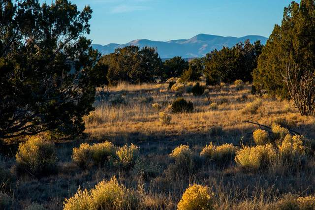 38 Entrada Descanso, Santa Fe, NM 87506 (MLS #202002679) :: Summit Group Real Estate Professionals