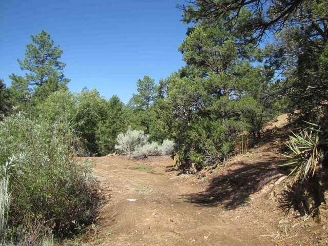 54 Hidden Valley, Santa Fe, NM 87505 (MLS #202002687) :: The Very Best of Santa Fe