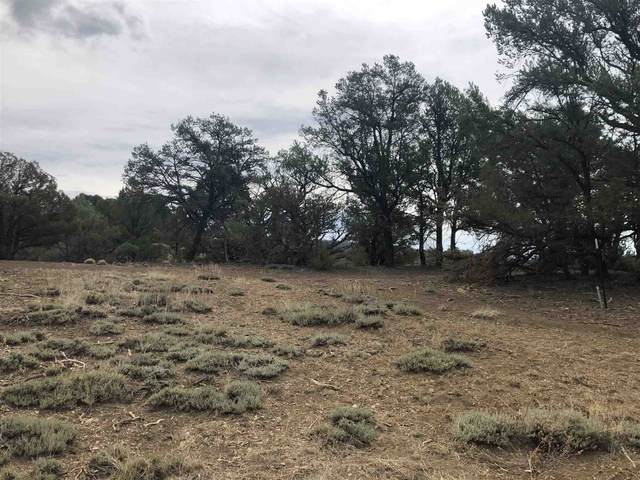 TBD S Leaning Pine, Rutheron, NM 87551 (MLS #202002694) :: The Very Best of Santa Fe