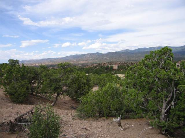117 Valle Sereno Lot 202, Santa Fe, NM 87506 (MLS #202002712) :: The Desmond Hamilton Group