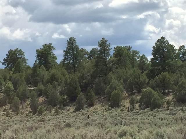 0 Unit 1, Tract 174, El Vado Lake S/D, Tierra Amarilla, NM 87575 (MLS #202002829) :: The Very Best of Santa Fe