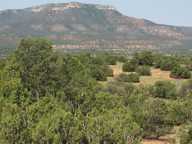 Lot #1 Ranchos Del Rito, San Jose, NM 87565 (MLS #202002831) :: The Very Best of Santa Fe