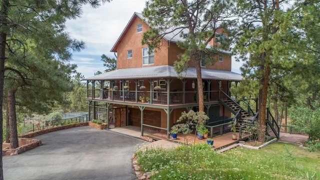 15 Lightning Ridge Road, Santa Fe, NM 87505 (MLS #202002862) :: The Very Best of Santa Fe