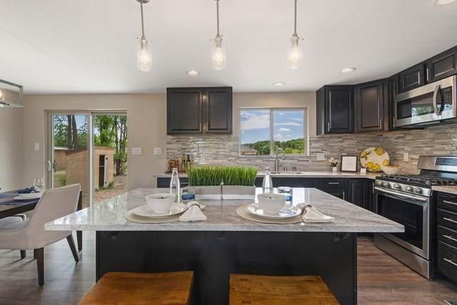79 Theresa Lane, Private Drive 1138, La Mesilla, NM 87532 (MLS #202002863) :: Summit Group Real Estate Professionals